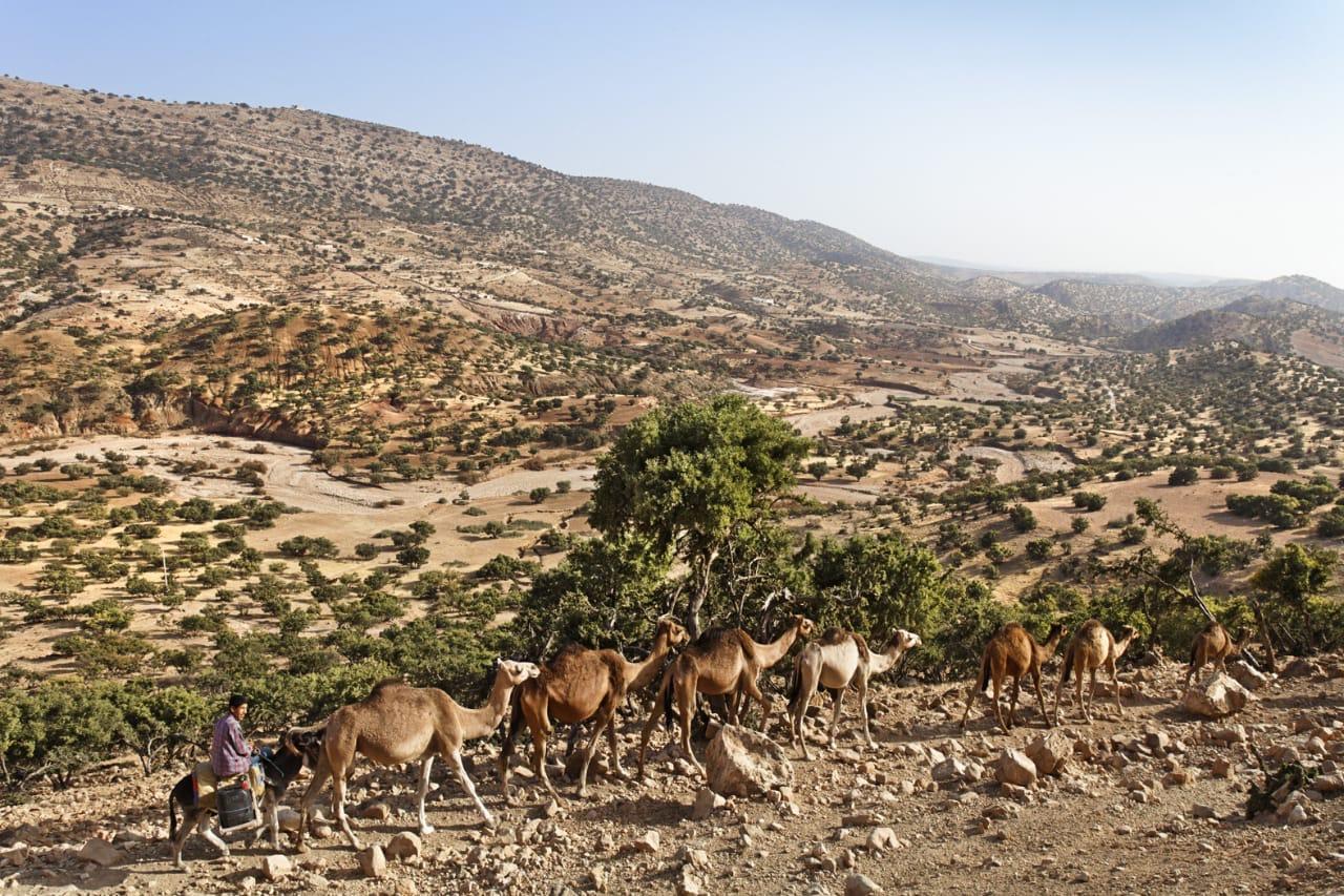 モロッコの乾燥地帯